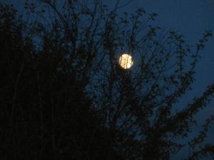 Dagen innan supermånen